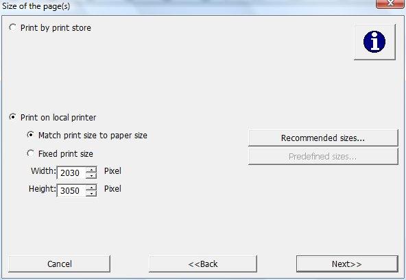 Второй шаг Мастера: определение параметров печати