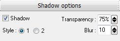 Вкладка Shadow options (Опции тени)