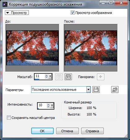 Диалоговое окно Pincushion Distortion Correction (Коррекция подушкообразного искажения)
