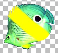 Защита прозрачности установлена Corel PaintShop Pro X4 автор Шитов В.Н.