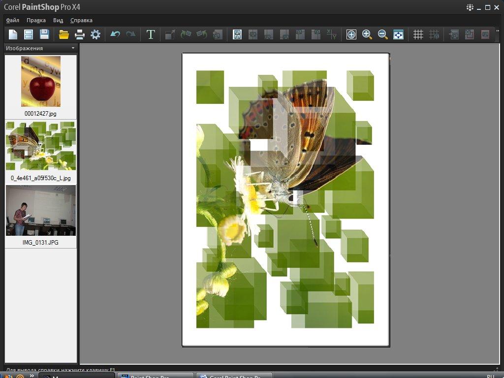 Предварительный просмотр печати Corel PaintShop Pro X4 автор Шитов В.Н.