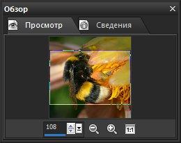 Панель Overview (Обзор). Вкладка Preview (Просмотр) Corel PaintShop Pro X4 автор Шитов В.Н.