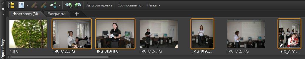 Панель Organizer (Органайзер) Corel PaintShop Pro X4 автор Шитов В.Н.