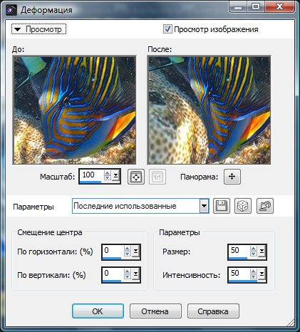 Диалоговое окно Warp (Деформация) Corel Paint Shop Pro X4