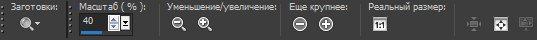 Панель опций для инструмента Zoom (Масштаб) Corel PaintShop Pro X4 Автор Шитов В.Н.